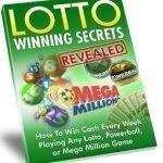 Lotto VIP secrets book green.